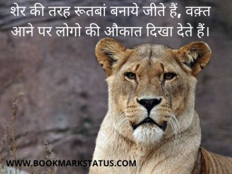 -lion attitude quotes in hindi | BOOKMARK STATUS