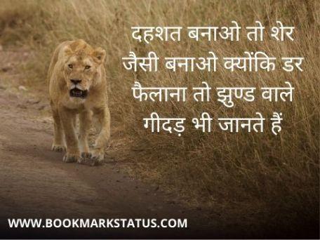 शेर पर स्टेटस