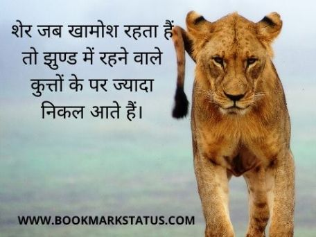 -lion attitude status | BOOKMARK STATUS