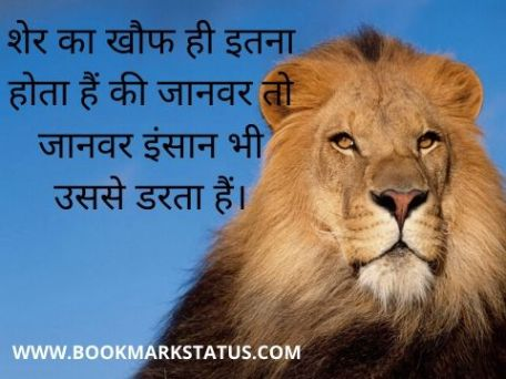 -lion images with quotes in hindi | BOOKMARK STATUS