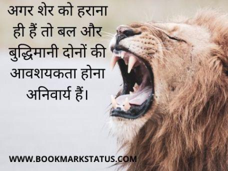 -status on lion