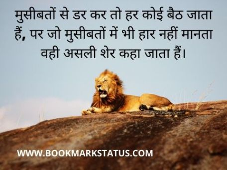 -lion status in hindi | BOOKMARK STATUS