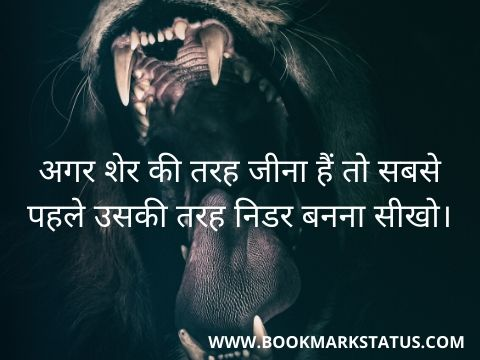 -lion quotes in hindi | BOOKMARK STATUS