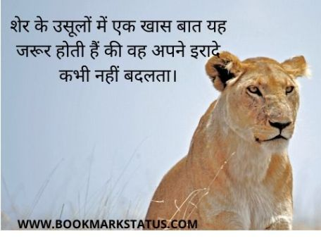 -motivational lion quotes in hindi | BOOKMARK STATUS