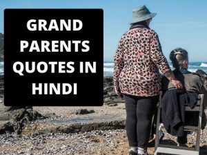 65+ Amazing Grandparents Quotes in  Hindi