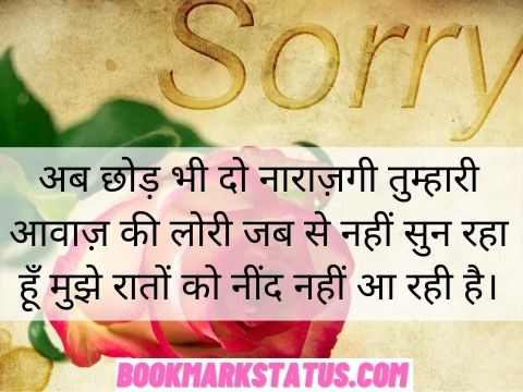 Sorry Quotes For GF in Hindi