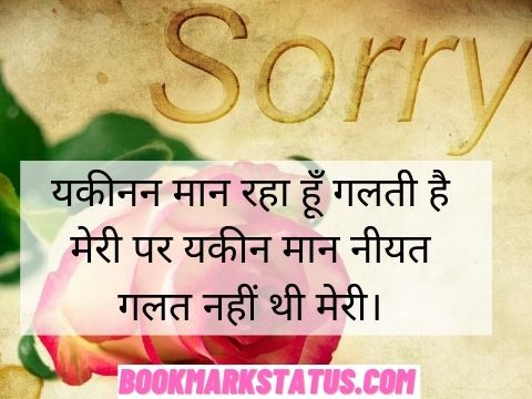 feeling sorry status in hindi