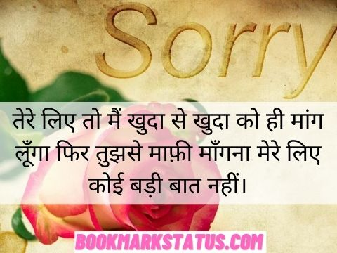 apologize quotes in hindi
