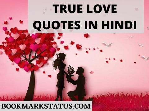 59+ Best True Love Quotes in Hindi