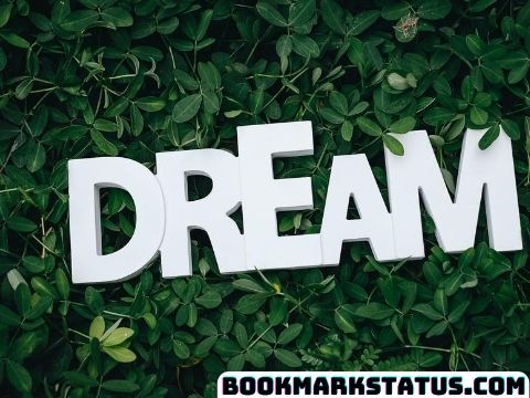 Dream Quotes in Hindi – (सपनो पर बेहतरीन अनमोल वचन)