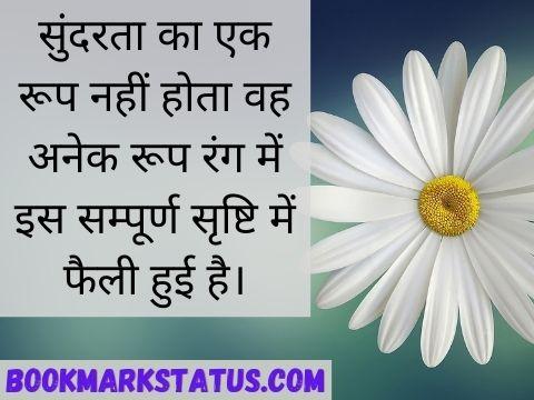 sundarta quotes in hindi