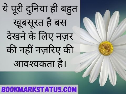 look quotes in hindi