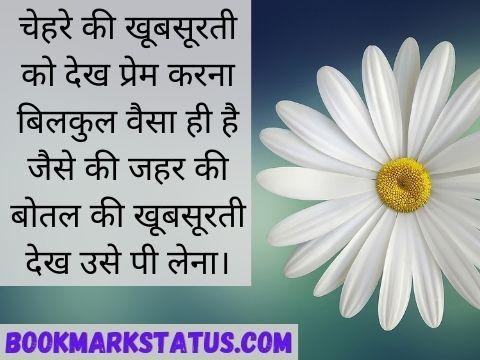 Beauty status in Hindi