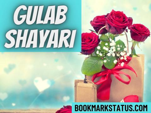 Gulab Shayari in Hindi
