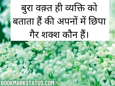 true lines in hindi