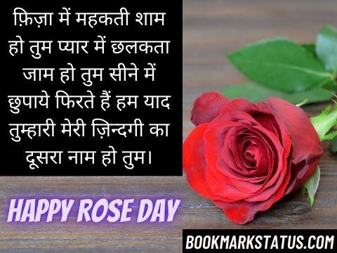 rose status in hindi