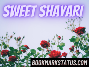 30 Best Sweet Shayari