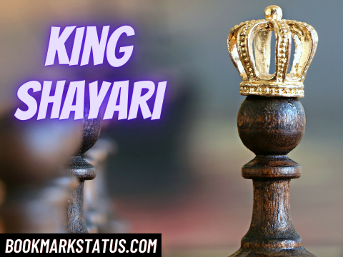 You are currently viewing 30 Best King Shayari in Hindi for Fb and Whatsapp