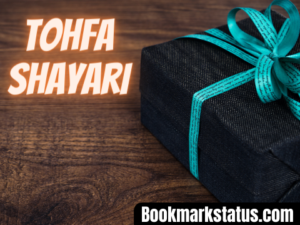 30 Latest Tohfa Shayari