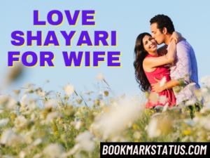 30 Best Romantic Love Shayari for wife