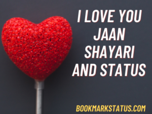 I Love You Jaan – shayari and Status in Hindi