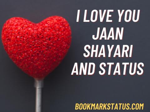 I Love You Jaan – shayari and Status in Hindi