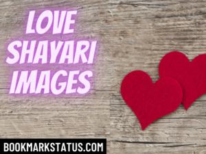 100+ Best Love shayari images in Hindi