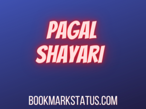 25 Best 2 Line Pagal Shayari
