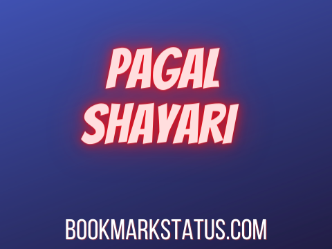 You are currently viewing 25 Best 2 Line Pagal Shayari