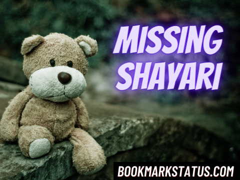 30 Best Missing Shayari – (याद शायरी)