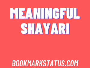 Read more about the article 26 Best meaningful shayari