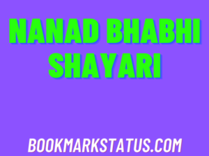 Read more about the article 25 Best nanad bhabhi shayari in hindi