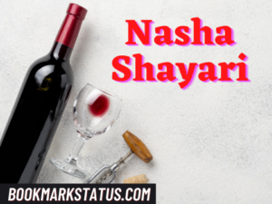 Read more about the article 30 Best Nasha Shayari