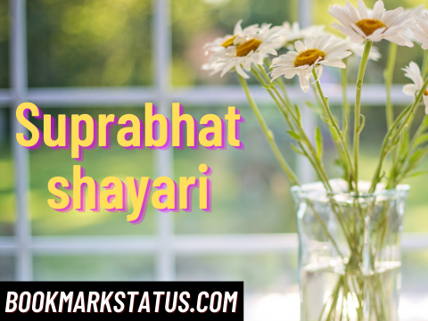 Read more about the article 30+ Best Suprabhat shayari