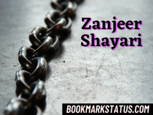 Read more about the article 25 Best Zanjeer Shayari