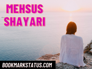 Read more about the article 25 Best mehsus shayari