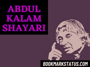 Read more about the article 25 Best Abdul Kalam Shayari